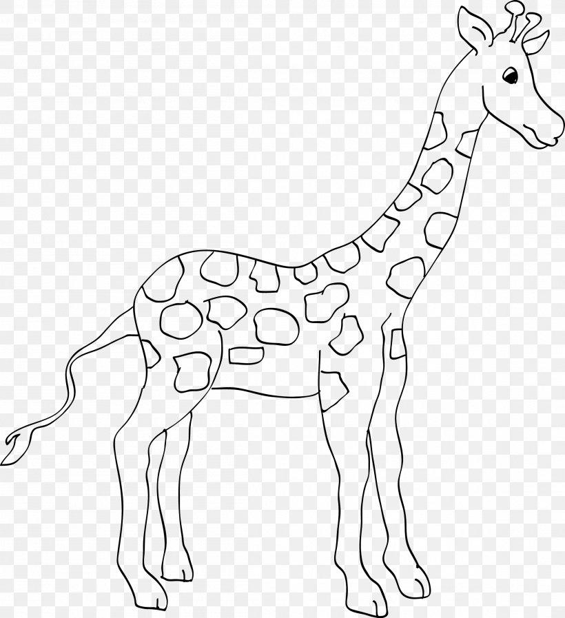 animal giraffe coloring book ausmalbild zoo png