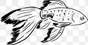 Fish - Black Telescope Shubunkin Comet Oranda Ryukin PNG