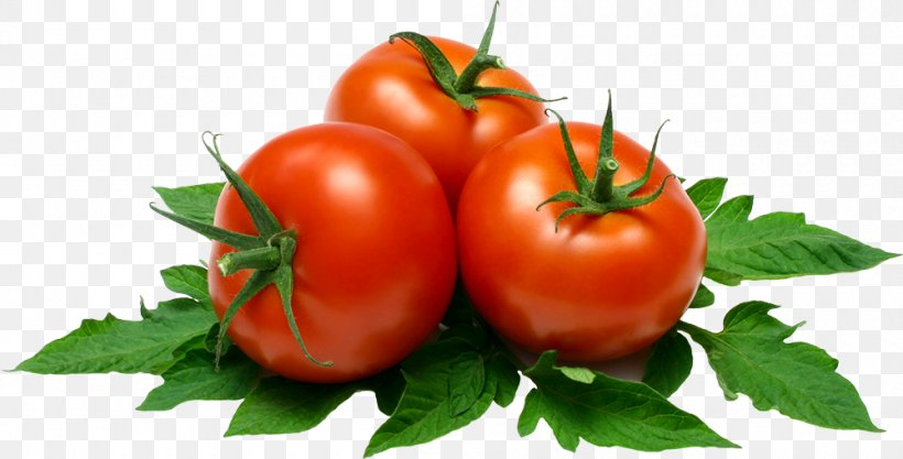 Vegetable Cartoon, PNG, 1000x509px, Plum Tomato, Basil, Bush Tomato, Cherry Tomatoes, Food Download Free