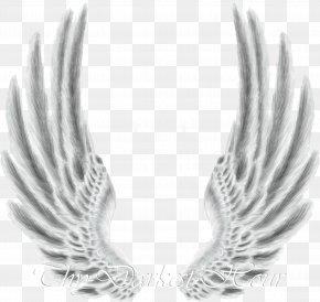 Wings - Desktop Wallpaper Drawing Clip Art PNG