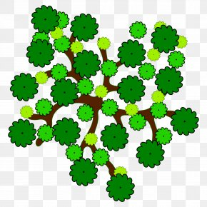 Tree Top View - Tree Clip Art PNG