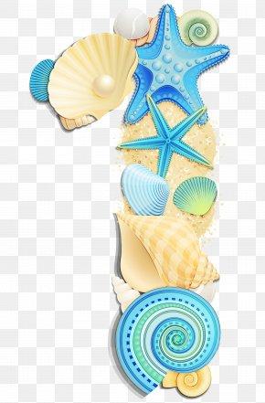 Sea Snail Shell - Snail Cartoon PNG