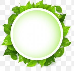 Green Leaves Vector Text Input Box - Leaf Green Text Euclidean Vector PNG
