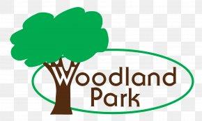 Park TOP - Park Model Car Dealership Campervans Woodland Park PNG