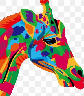 Color Graffiti Horse Head - Drawing Stock Photography Illustration PNG