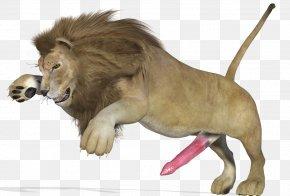 Lion - Lion Big Cat Animal PNG