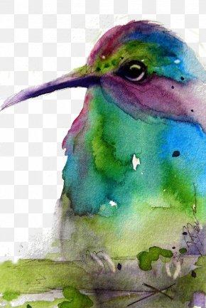 Green Birds - Hummingbird Green Purple PNG