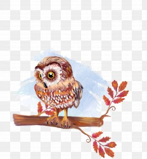 Vector Material Hand-painted Owl - Owl Watercolor Painting Drawing Illustration PNG