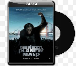 Young Godz - Planet Of The Apes Science Fiction Film Film Poster Film Director PNG