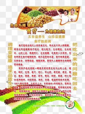Therapeutic Regimen Leaflets - Typeface Download Graphic Design Chinese Food Therapy PNG