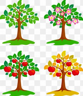 Fruit Trees - Drawing Painting Illustration PNG