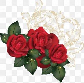 Spring Sea Roses Creative - Garden Roses Flower PNG