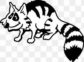Raccoon Graphics - Raccoon Clip Art PNG