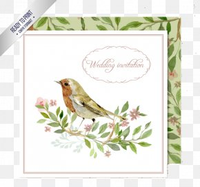 Watercolor Flowers Wedding Invitation Card Vector Material - Wedding Invitation Bird Watercolor Painting Clip Art PNG