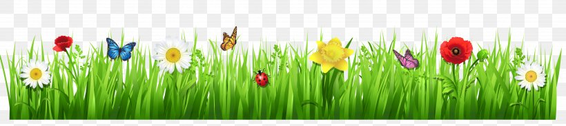 Tulip Meadow Grasses Wildflower Wallpaper, PNG, 4335x972px, Flower, Flowering Plant, Grass, Grass Family, Grasses Download Free