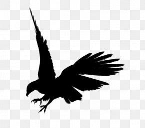 Eagle Black Siluet Image, Free Download - Eagle Silhouette Clip Art PNG