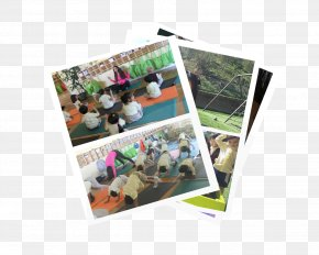 School Activities - Rancho Palos Verdes Montessori Education School Kindergarten Collage PNG