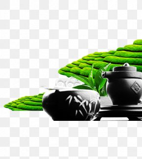 Green Tea Garden - Green Tea Tea Garden Tea Culture PNG