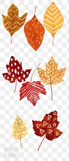 Autumn Leaves - Thanksgiving Autumn Leaf Color Place Card Drawing PNG