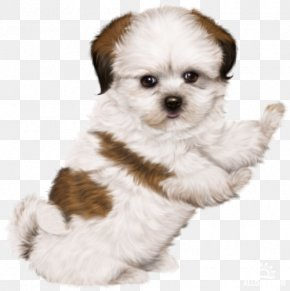 Puppy - Puppy Dog Drawing Clip Art PNG