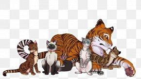 Tiger - Tiger Cat Leopard Felidae Lion PNG