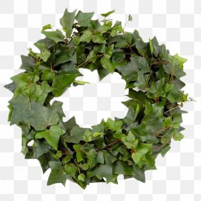 Green Leaf Garland - Leaf Wreath Garland Crown PNG