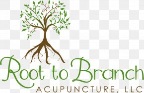 Acupuncture - Logo Brand Plant Stem Font PNG