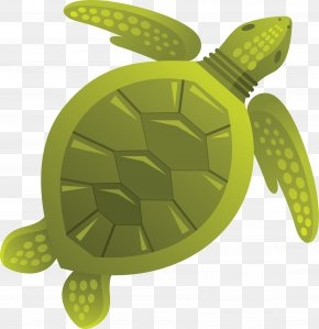 Turtle - Sea Turtle Tortoise Jellyfish Clip Art PNG