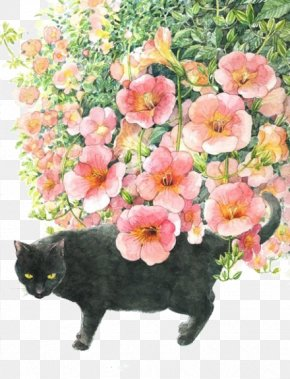 Painted Cat - Japan Cat Art Watercolor Painting Illustration PNG