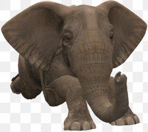 Elephant Clip Art - Clip Art African Elephant Asian Elephant PNG