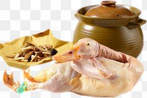 Duck - Duck Mallard Egg Food PNG