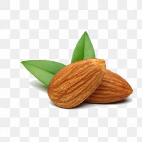 Almond - Nut Almond Food Apricot Kernel PNG