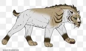 Cat - Saber-toothed Cat Tiger Lion Felidae PNG