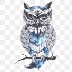 Owl Tattoo - Owl Tattoo Artist Bird Drawing PNG