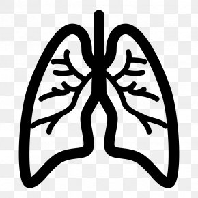 Lungs - Lung Chronic Obstructive Pulmonary Disease Asthma Respiration Chronic Condition PNG