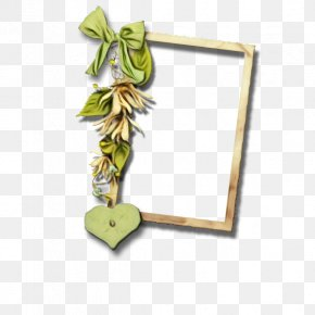 Plant Picture Frame - Picture Frame Frame PNG
