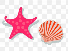 Red Fresh Shellfish Star Decoration Pattern - Template Gift Card Academic Certificate Holiday Summer School PNG