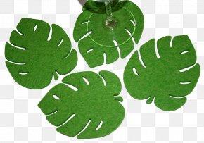 Green Palm Leaves - Merino Felt Coasters Wool PNG