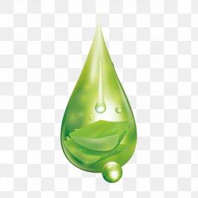 Green Water Drops - Drop Water PNG