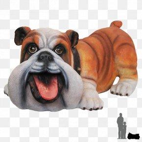 Bulldog - Toy Bulldog Old English Bulldog Olde English Bulldogge Animal PNG
