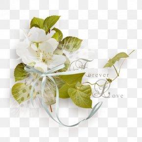 Flower - Clip Art Flower Desktop Wallpaper Image PNG