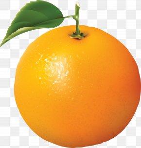Orange Image Download - Orange Juice Clip Art PNG