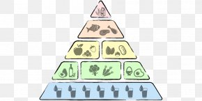 Carb - Low-carbohydrate Diet Food Pyramid Nutrition PNG