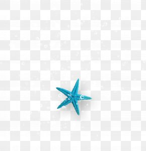 Starfish Bubbles - Turquoise Starfish Computer Wallpaper PNG