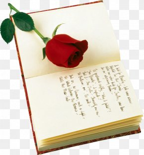 Roses And Books - A Red, Red Rose Valentine's Day Poetry Saint George's Day PNG