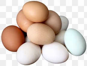 Egg - Chicken Egg White Yolk Boiled Egg PNG