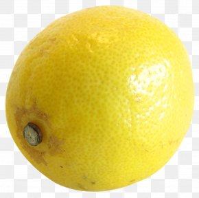Lemon - Lemonade Yellow Lemon-lime Drink PNG
