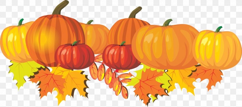 Pumpkin Pie Autumn Snickerdoodle Clip Art, PNG, 1851x818px, Pumpkin Pie, Autumn, Butter, Calabaza, Cucurbita Download Free