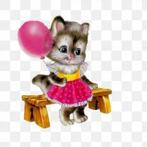 Kitten - Greeting Friendship Description Photography PNG