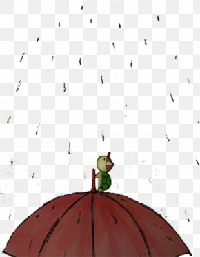 Rainy Day Material Free Download - Turtle Animal Gratis PNG